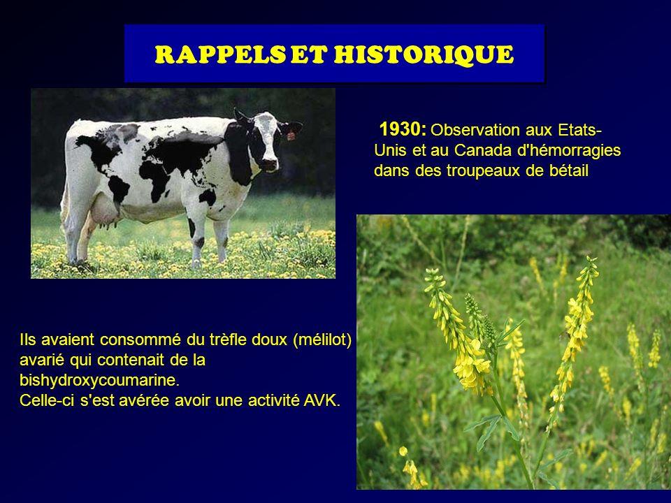 RAPPELS ET HISTORIQUE1930: Observation aux Etats-Unis et au Canada d hémorragies dans des troupeaux de bétail.