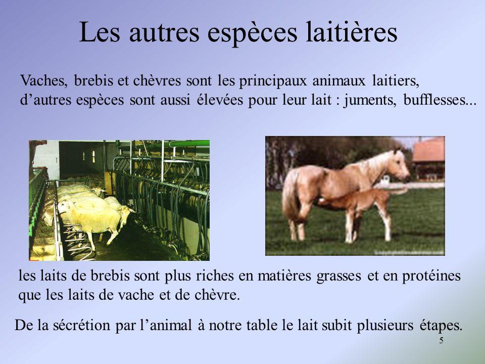 Les autres espèces laitières