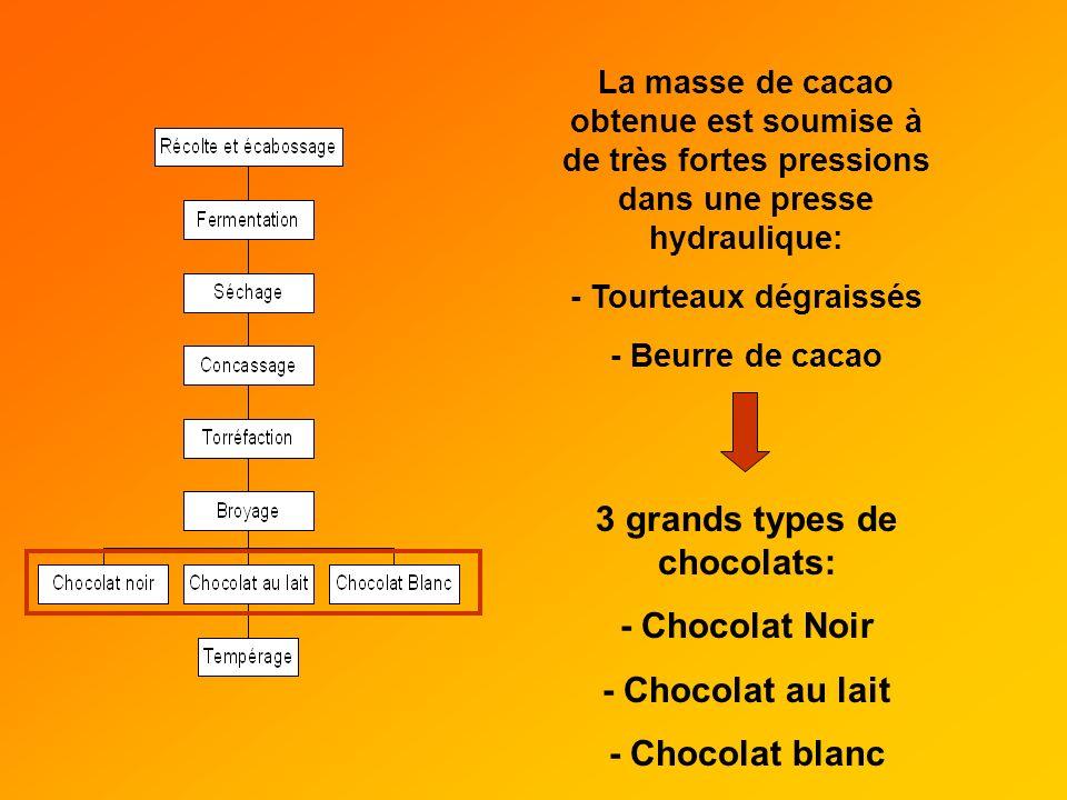 - Tourteaux dégraissés 3 grands types de chocolats: