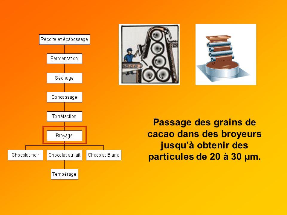 Passage des grains de cacao dans des broyeurs jusqu'à obtenir des particules de 20 à 30 µm.