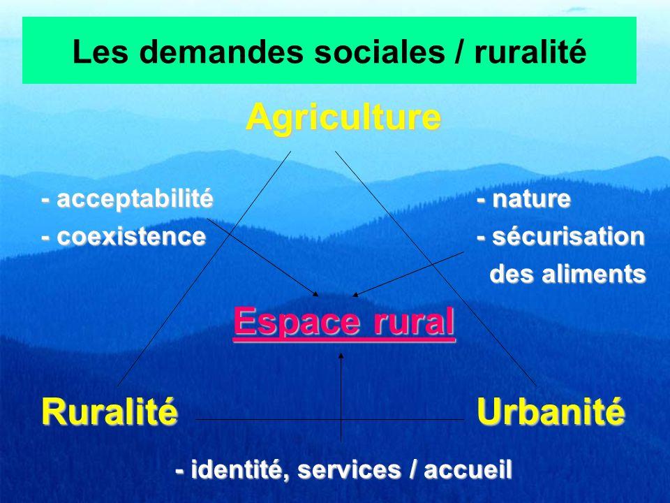Les demandes sociales / ruralité