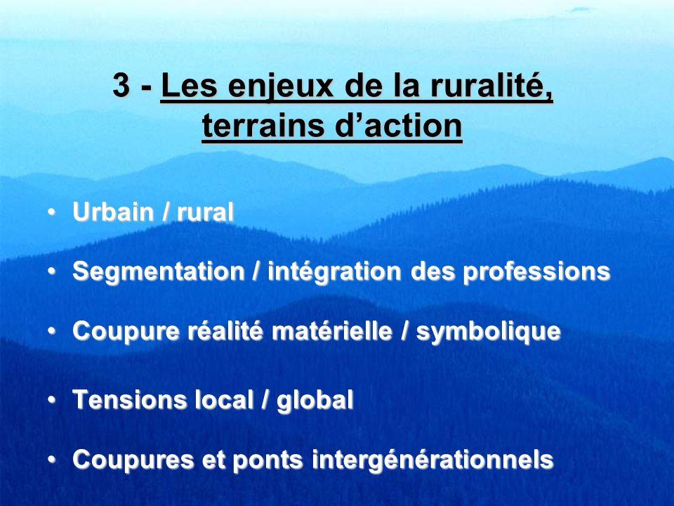 3 - Les enjeux de la ruralité, terrains d'action