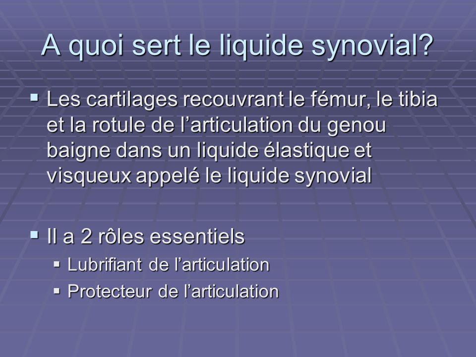 A quoi sert le liquide synovial