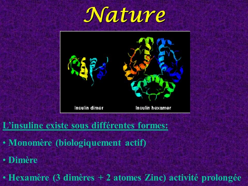 Nature L'insuline existe sous différentes formes:
