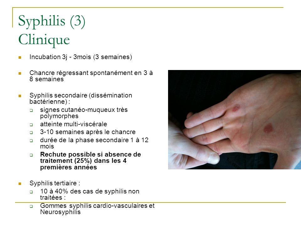 Syphilis (3) Clinique Incubation 3j - 3mois (3 semaines)