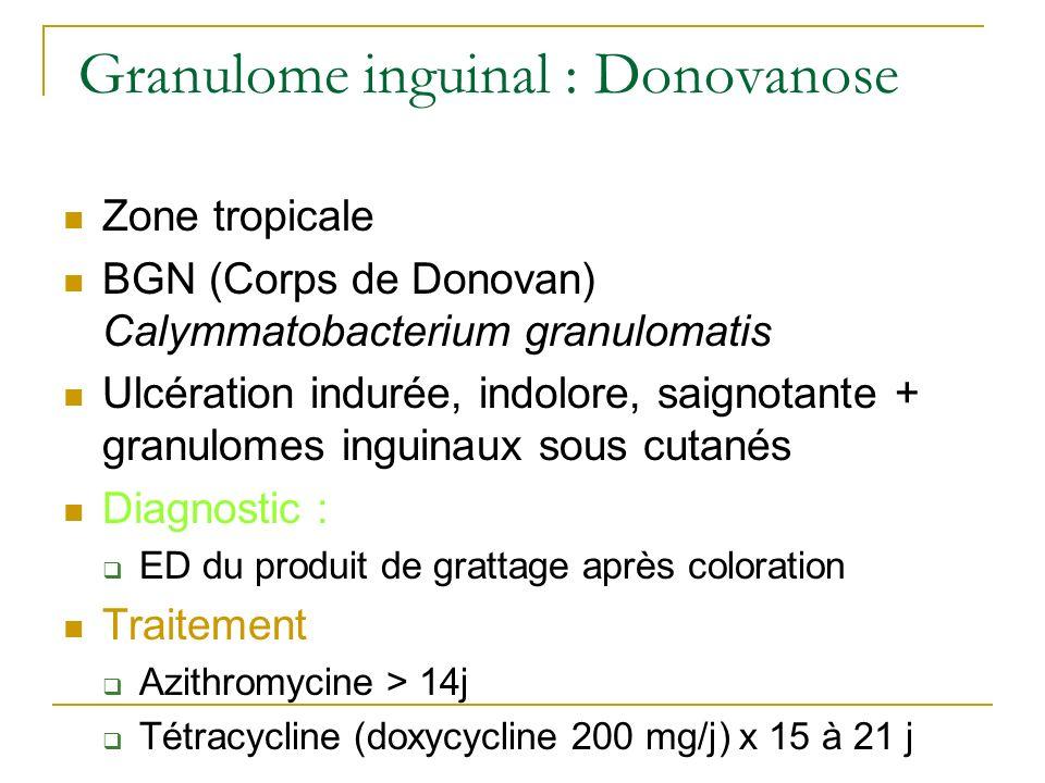 Granulome inguinal : Donovanose