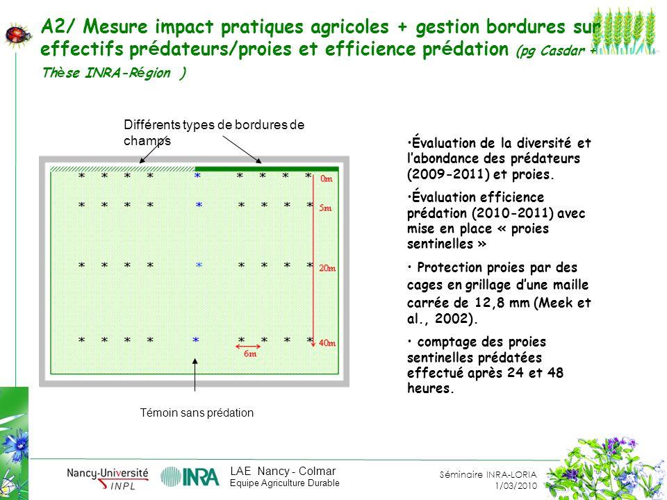 A2/ Mesure impact pratiques agricoles + gestion bordures sur effectifs prédateurs/proies et efficience prédation (pg Casdar + Thèse INRA-Région )