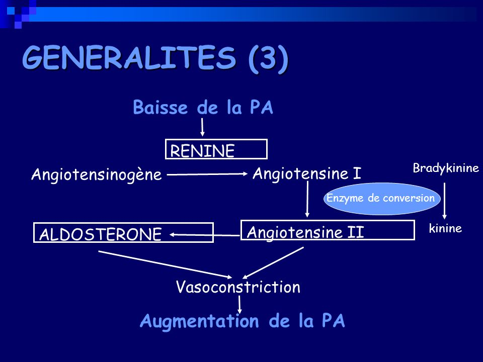 GENERALITES (3) Baisse de la PA Augmentation de la PA RENINE
