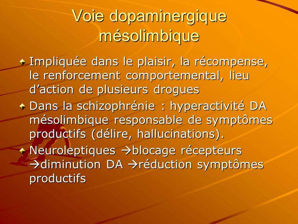 Voie dopaminergique mésolimbique