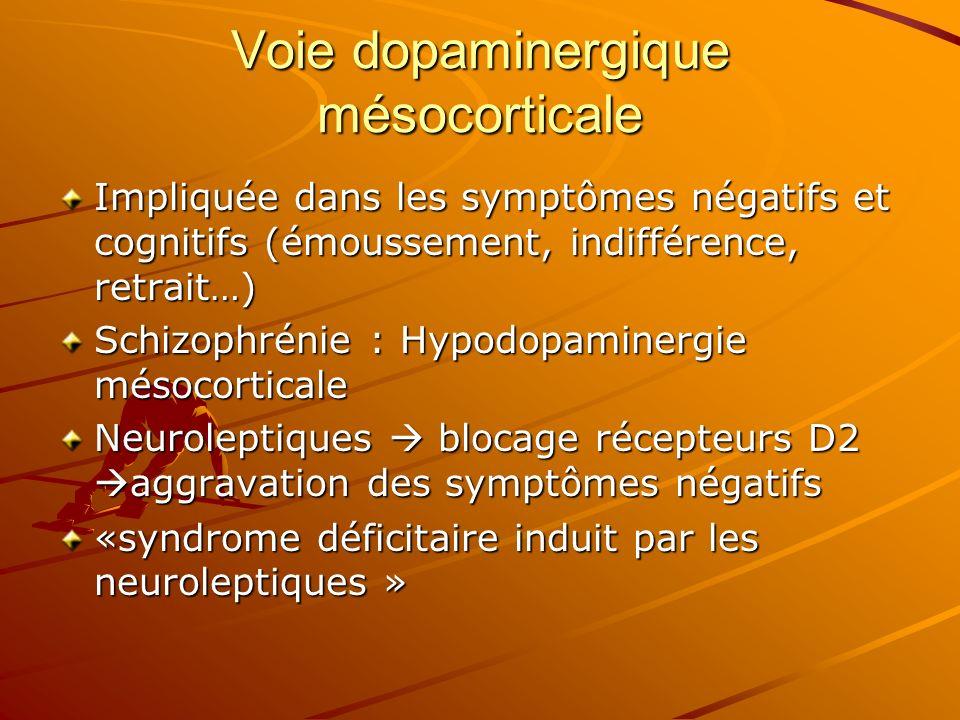 Voie dopaminergique mésocorticale