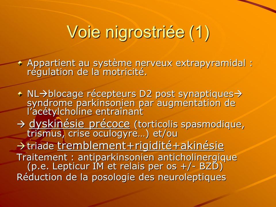 Voie nigrostriée (1)Appartient au système nerveux extrapyramidal : régulation de la motricité.