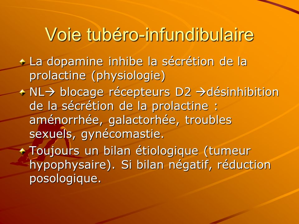 Voie tubéro-infundibulaire