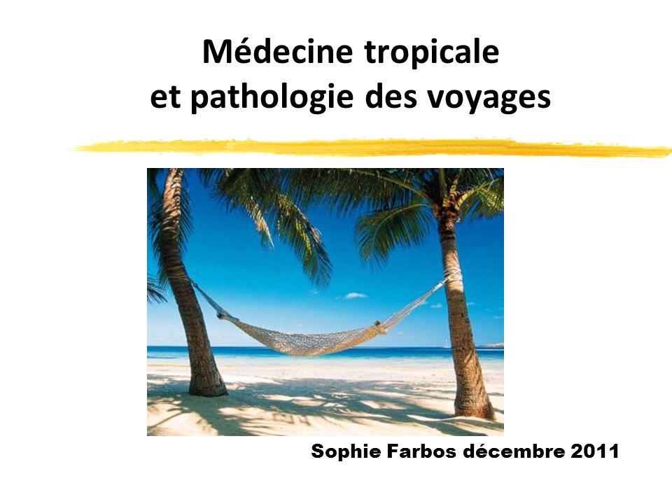 Médecine tropicale et pathologie des voyages