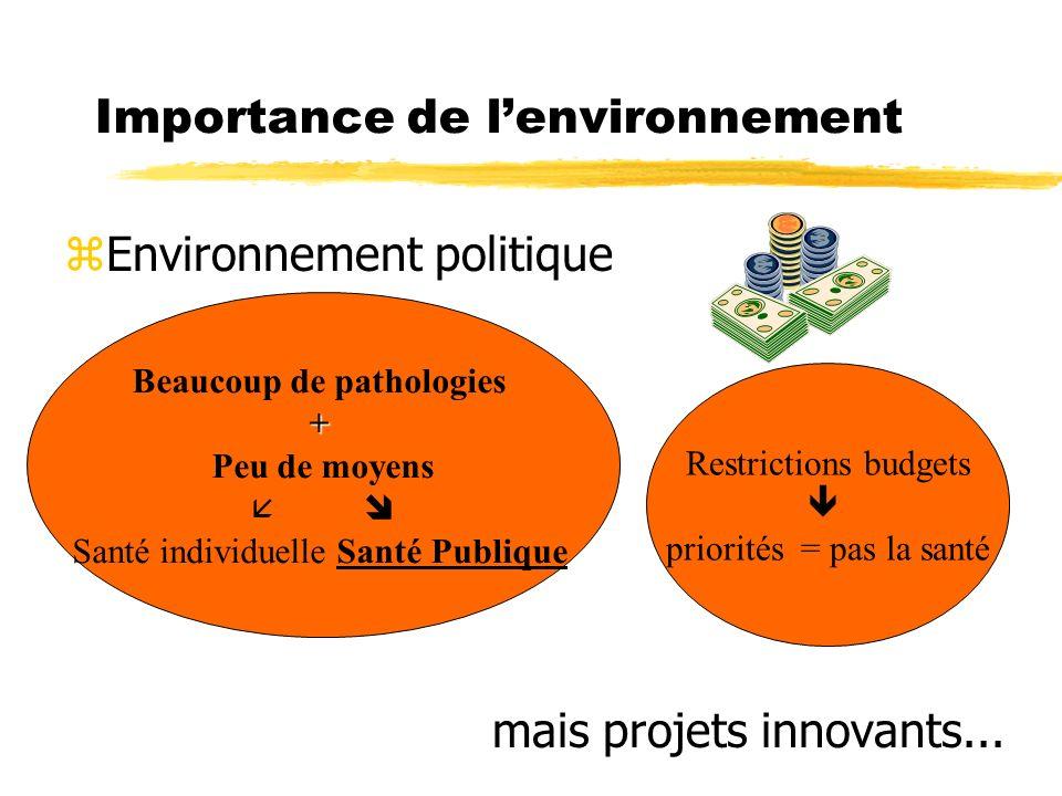 Importance de l'environnement