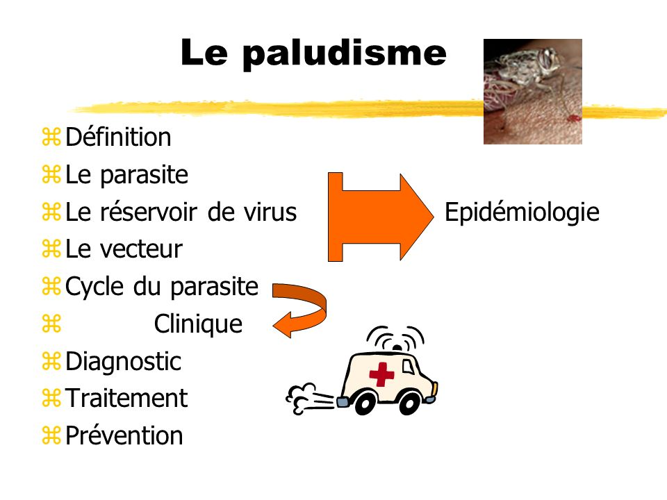 Le paludisme Définition Le parasite