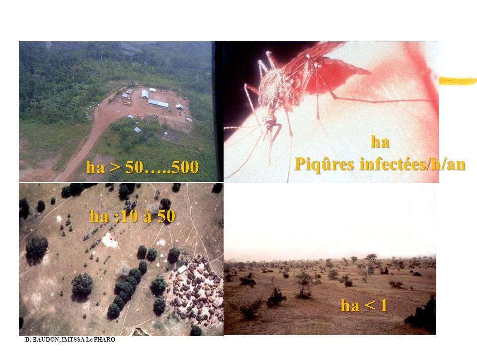 Piqûres infectées/h/an