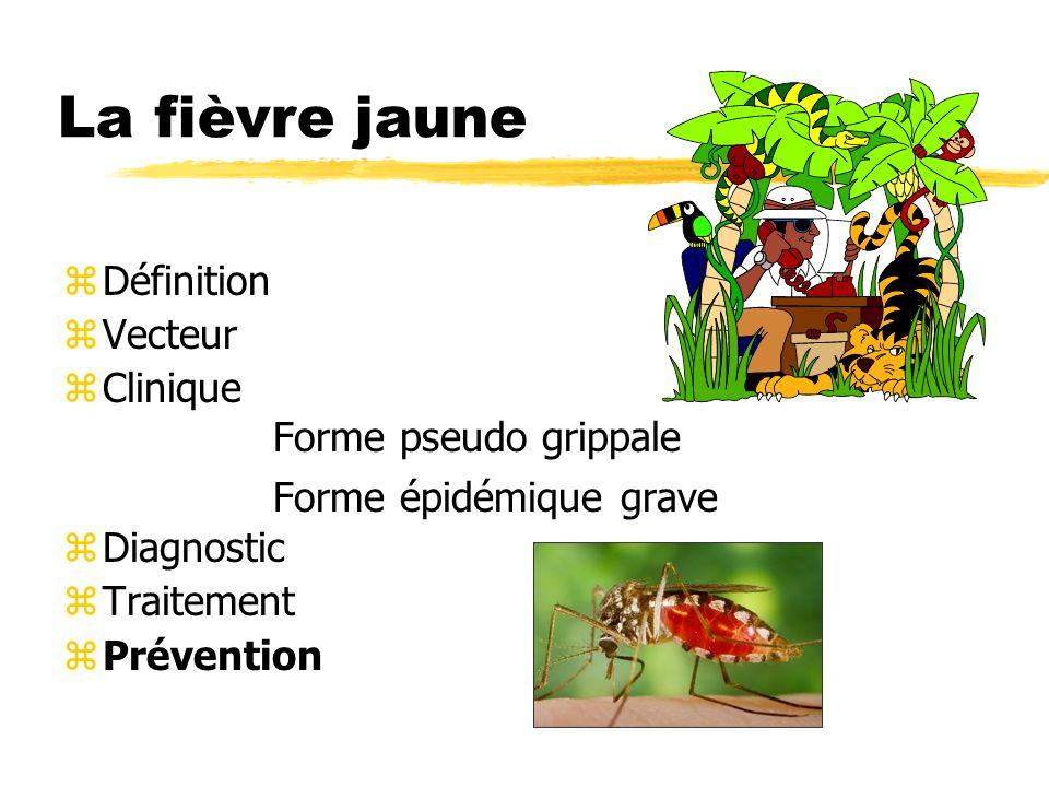 La fièvre jaune Définition Vecteur Clinique Forme pseudo grippale