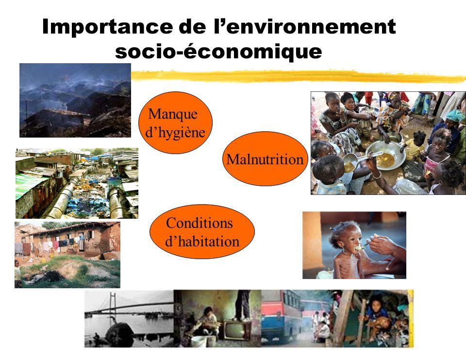 Importance de l'environnement socio-économique