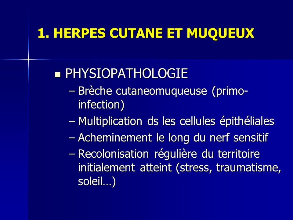 1. HERPES CUTANE ET MUQUEUX