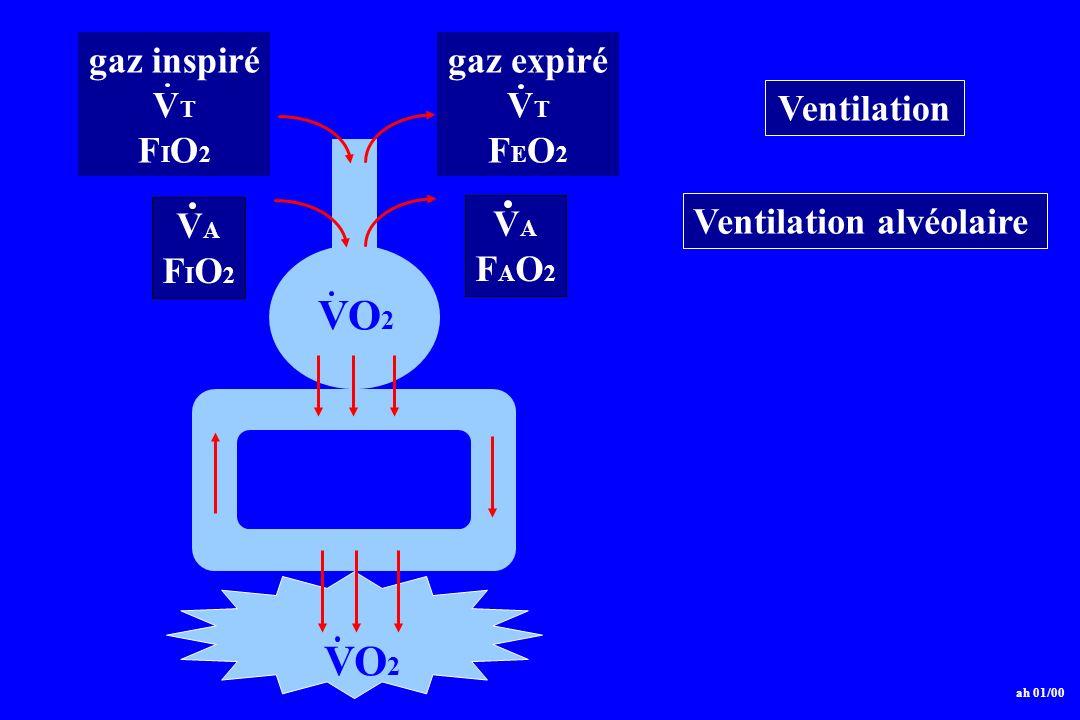 VO2 gaz inspiré VT FIO2 gaz expiré FEO2 VA FAO2 Ventilation