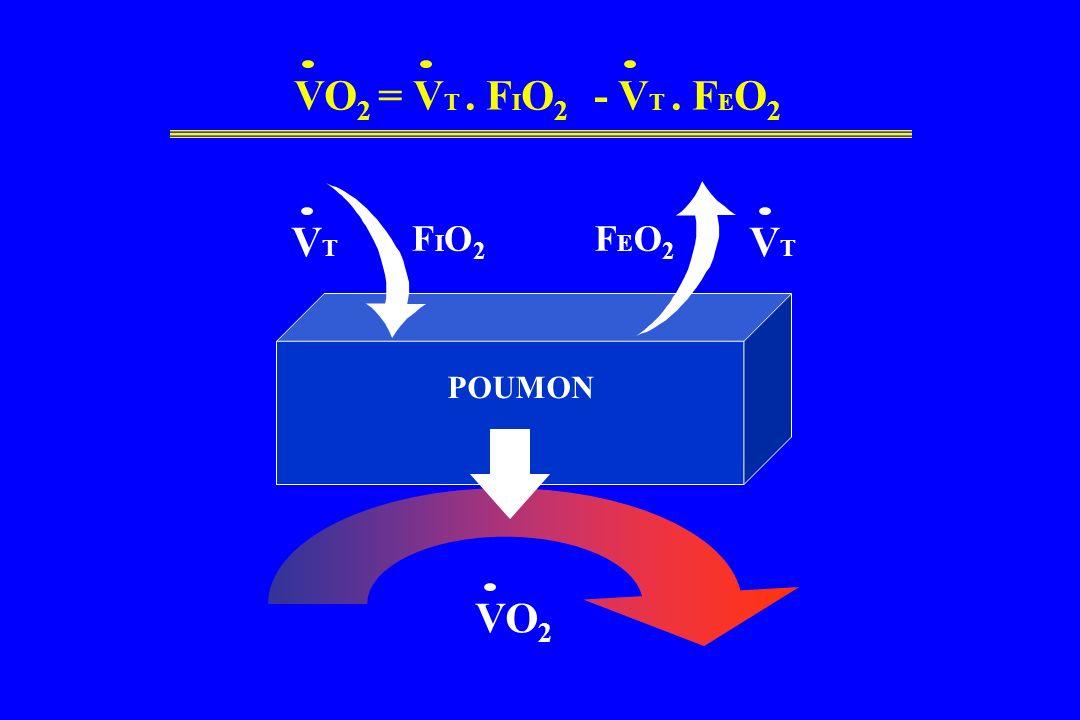 VO2 = VT . FIO2 - VT . FEO2 VT VT FIO2 FEO2 POUMON VO2