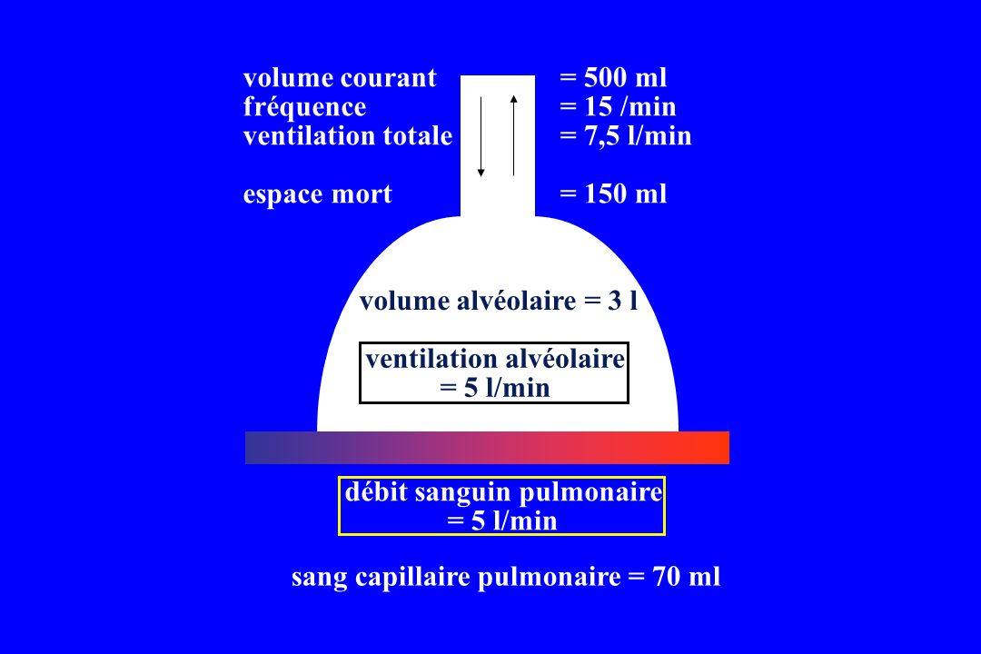 sang capillaire pulmonaire = 70 ml