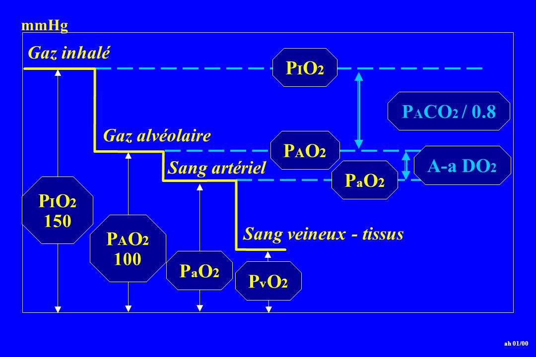 PIO2 PACO2 / 0.8 PAO2 A-a DO2 PaO2 PIO2 PAO2 PaO2 PvO2