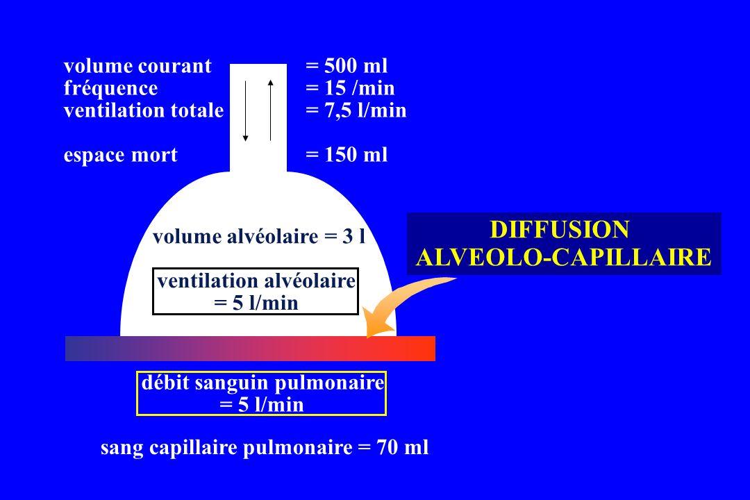 DIFFUSION ALVEOLO-CAPILLAIRE