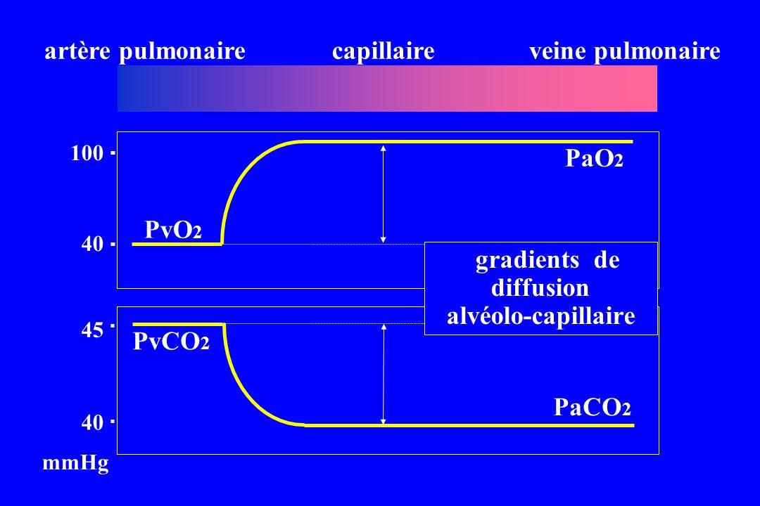 artère pulmonaire capillaire veine pulmonaire PaO2 PvO2 gradients de