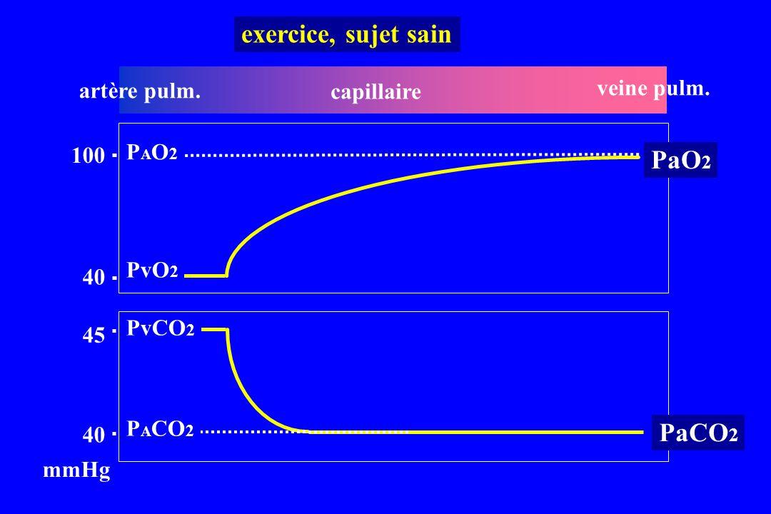exercice, sujet sain PaO2 PaCO2 veine pulm. artère pulm. capillaire