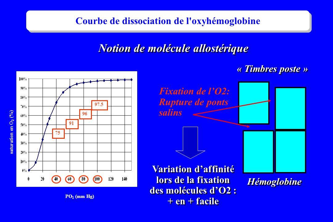 Courbe de dissociation de l oxyhémoglobine