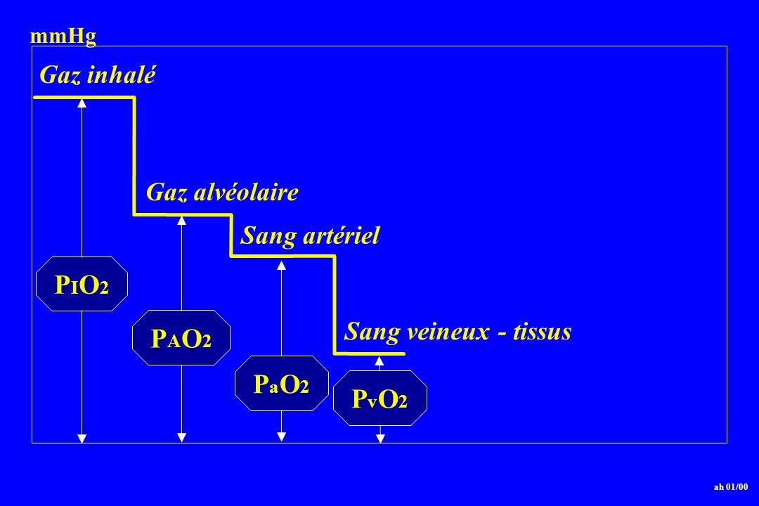 PIO2 PAO2 PaO2 PvO2 Gaz inhalé Gaz alvéolaire Sang artériel
