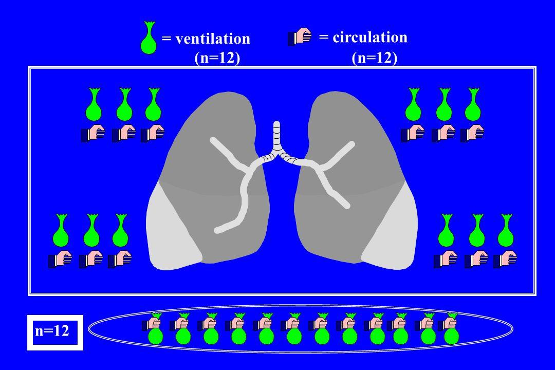 = ventilation = circulation (n=12) (n=12) n=12