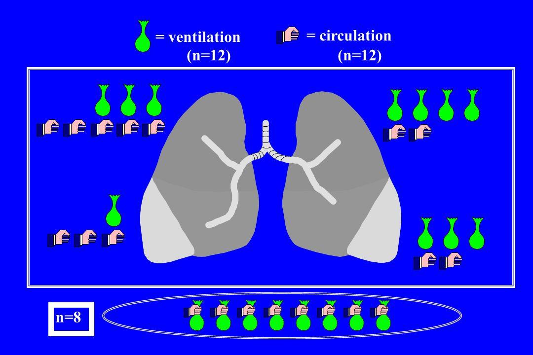 = ventilation = circulation (n=12) (n=12) + n=8