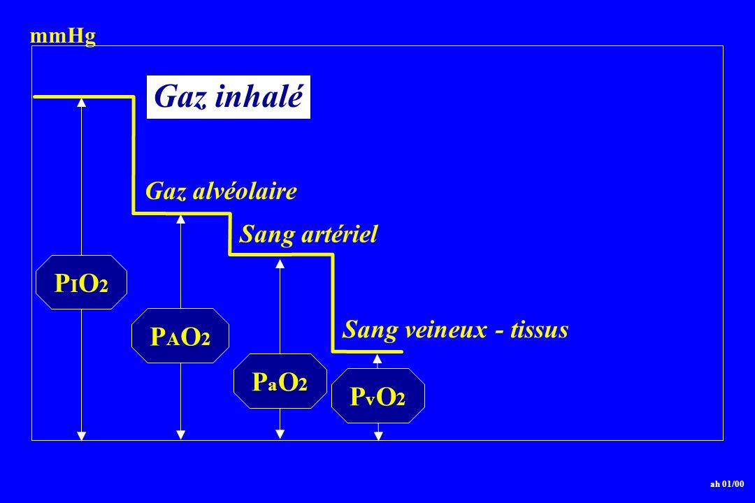 Gaz inhalé PIO2 PAO2 PaO2 PvO2 Gaz alvéolaire Sang artériel