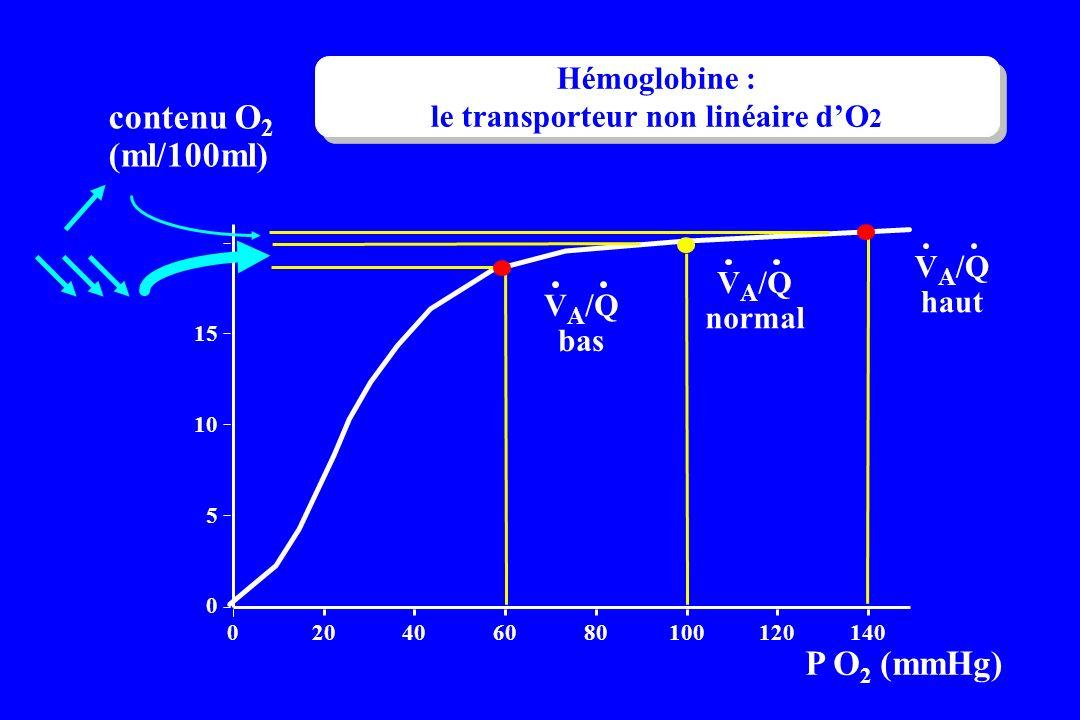 Hémoglobine : le transporteur non linéaire d'O2