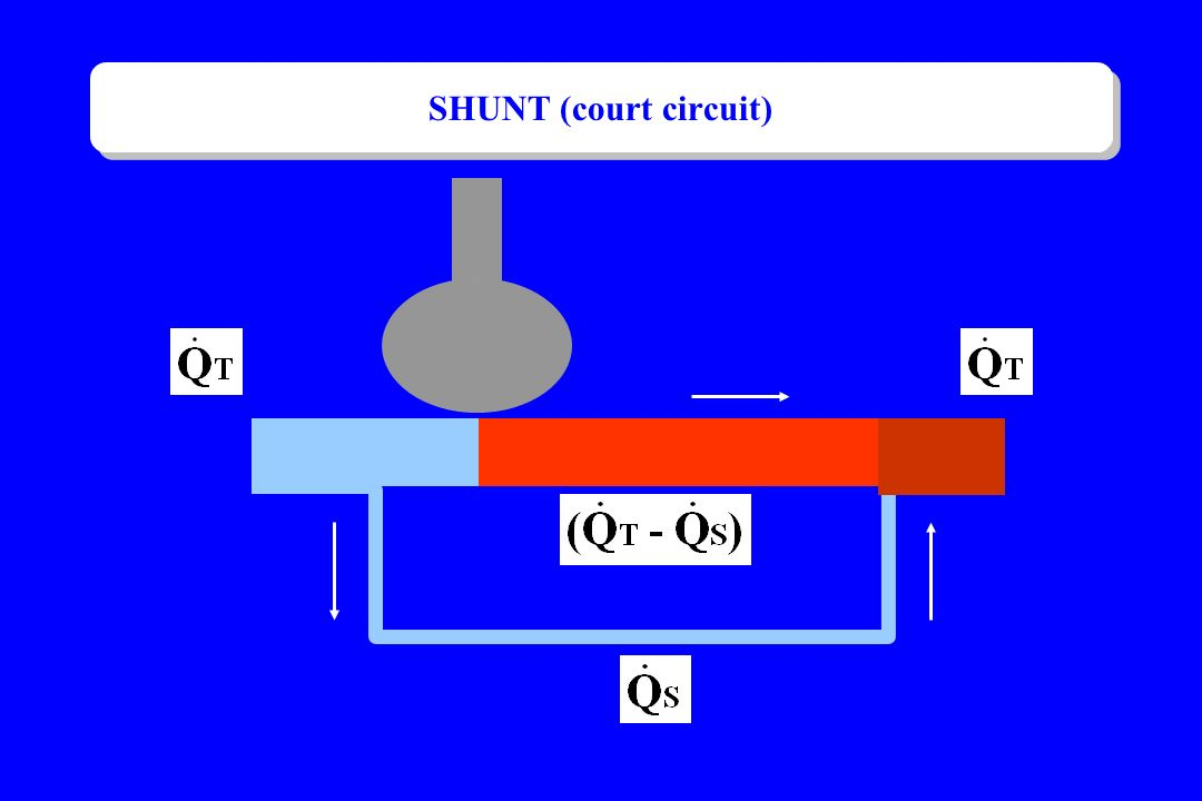 SHUNT (court circuit)