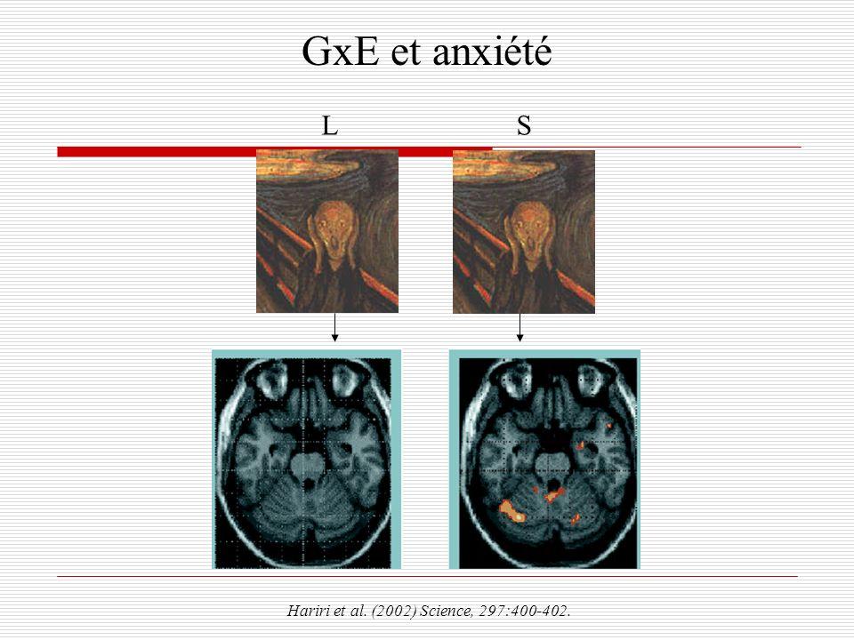 GxE et anxiété L S Hariri et al. (2002) Science, 297:400-402.
