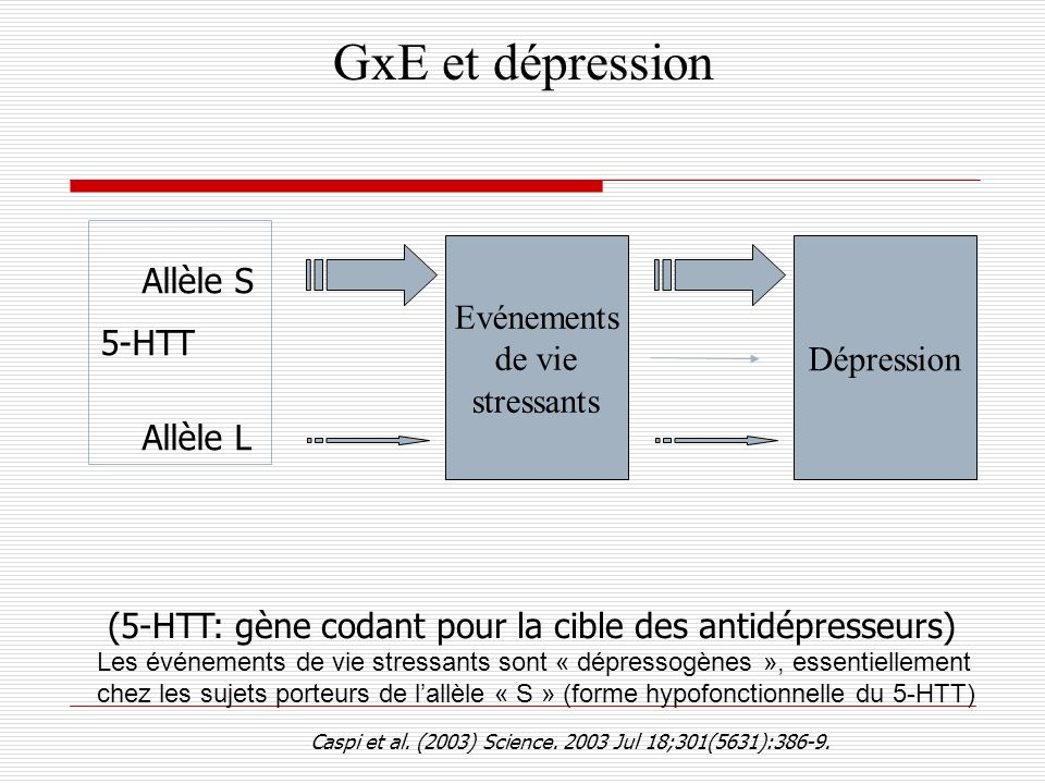 GxE et dépression 5-HTT. (5-HTT: gène codant pour la cible des antidépresseurs)