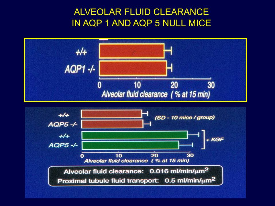 ALVEOLAR FLUID CLEARANCE