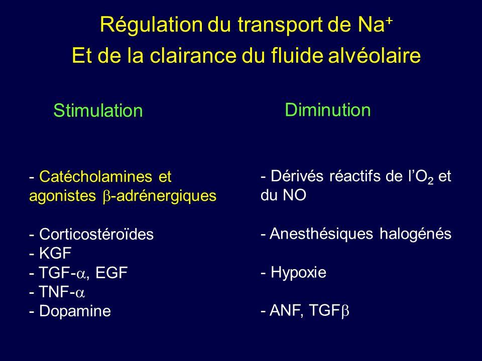 Régulation du transport de Na+ Et de la clairance du fluide alvéolaire