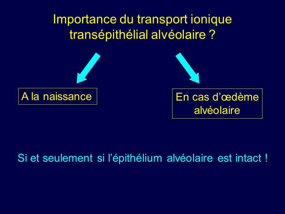Importance du transport ionique transépithélial alvéolaire