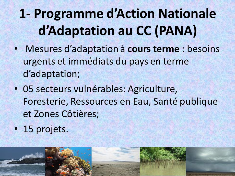 1- Programme d'Action Nationale d'Adaptation au CC (PANA)