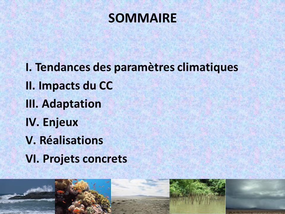 SOMMAIRE Tendances des paramètres climatiques Impacts du CC Adaptation