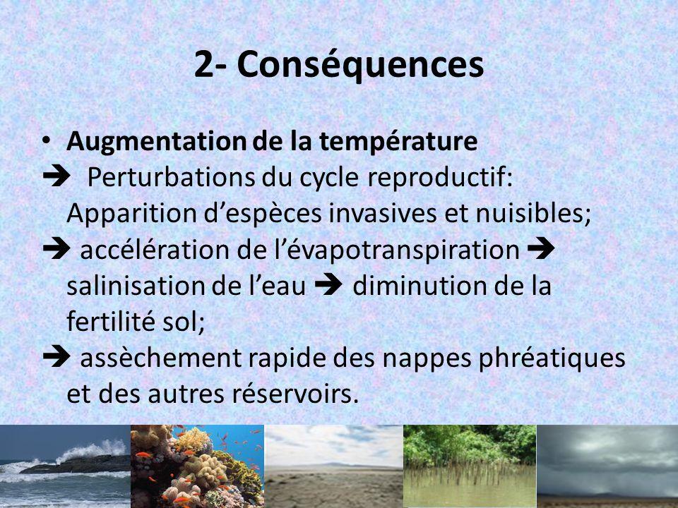 2- Conséquences Augmentation de la température
