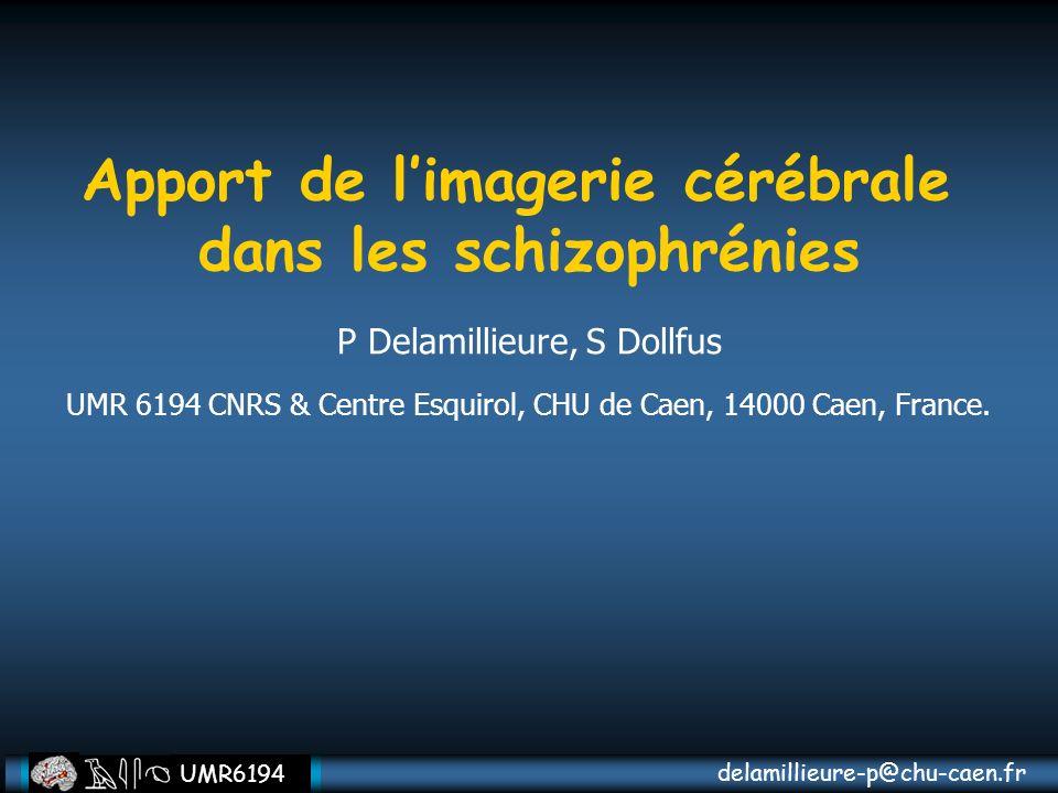 Apport de l'imagerie cérébrale dans les schizophrénies