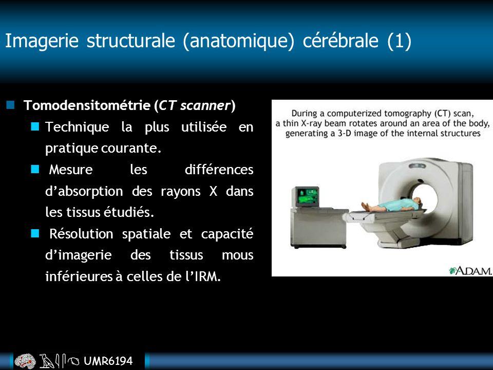 Imagerie structurale (anatomique) cérébrale (1)