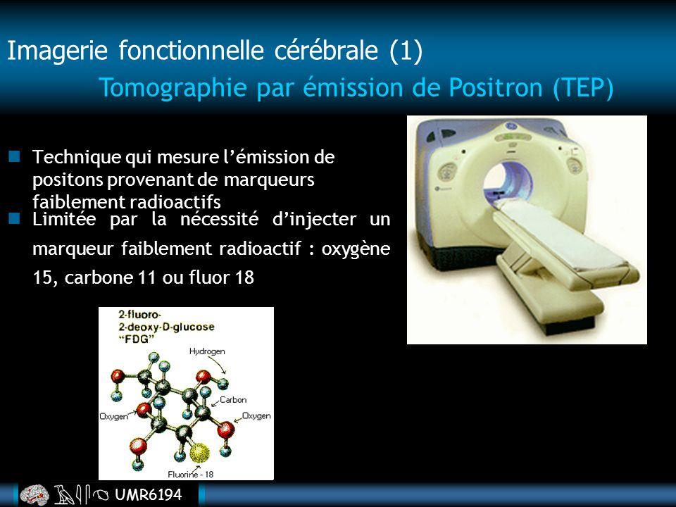Imagerie fonctionnelle cérébrale (1)
