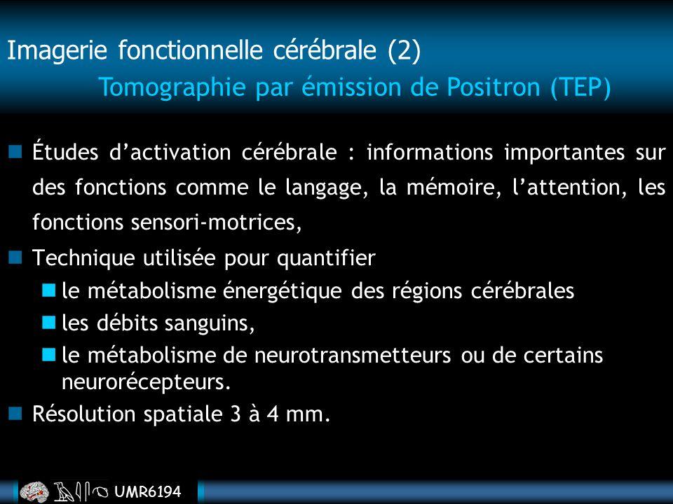 Imagerie fonctionnelle cérébrale (2)