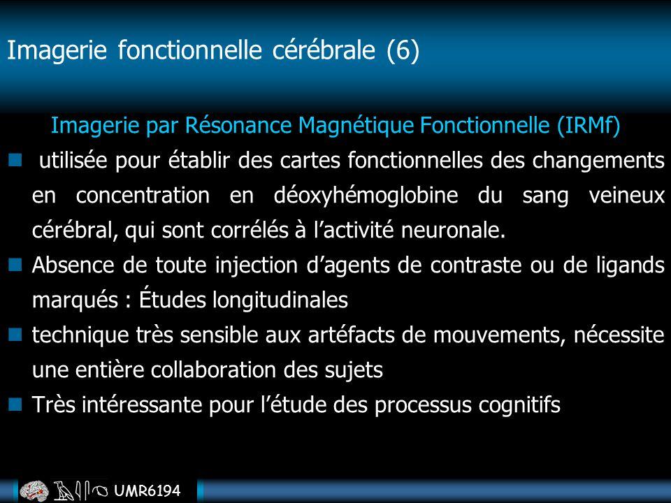 Imagerie fonctionnelle cérébrale (6)